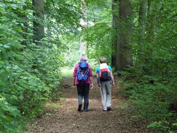 Wanderwege in Sittensen im Landkreis Rotenburg